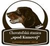 Spod Kunovej