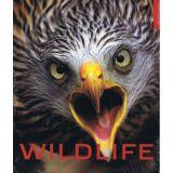 Kniha Wildlife