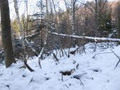 desatorák v snehu