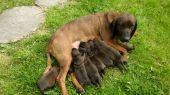 Mama a 7 statočných... :)