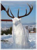 snehuliak jeleňovitý