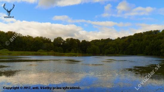 Rokytniský rybník