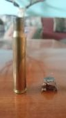 Hornady sst 30-06, 11,7 g