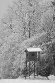 posed v zamrznutej krajine