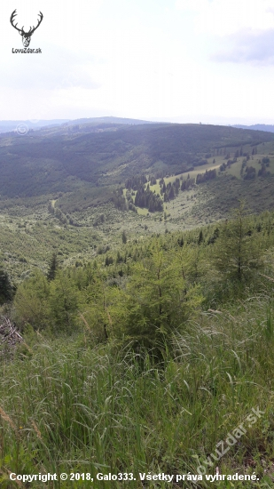 Levočske vrchy