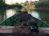 Ranná idylka na Dunaji