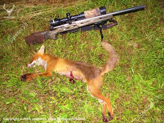 Čisty lov