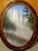 Srnec schovaný v mlhe