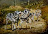 Keď sa vlci hrajú