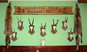 ps. mocensky haj