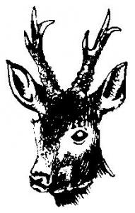 Poľovnícke združenie Grúň Divín
