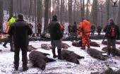 Spoločná poľovačka na diviaky Jablonka - Polianka 2016